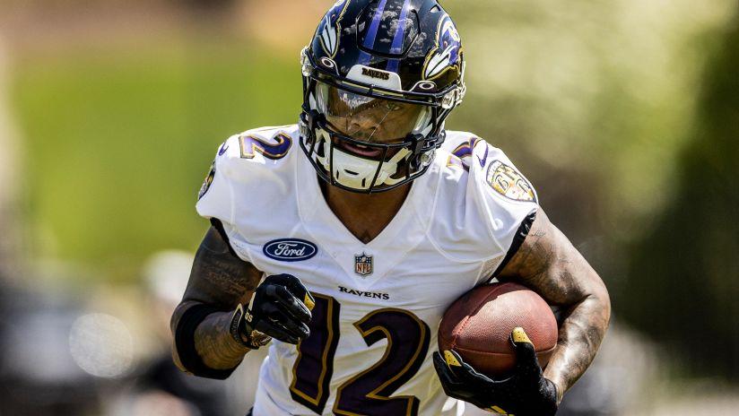 Baltimore Ravens WR